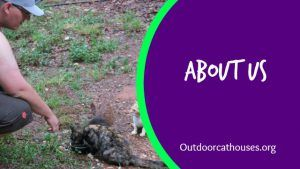 Outdoor_Cat_Houses_About_US