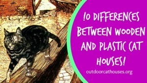 10 Differences Between Wooden and Plastic Insulated Cat Houses