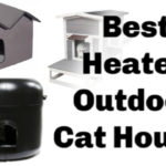 Outdoor_cat_houses_best_heated_outdoor_cat_houses