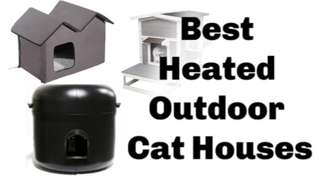 10 Best Heated Outdoor Cat Houses 2019 [Buyer's Guide]