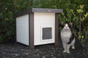 ecoFLEX_Albany_Outdoor_Feral_Cat_House_Outside
