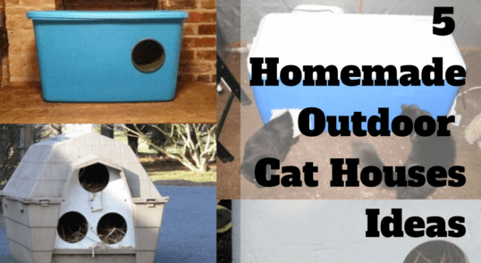 5_build_your_own_homemade_diy_outdoor_cat_house_ideas