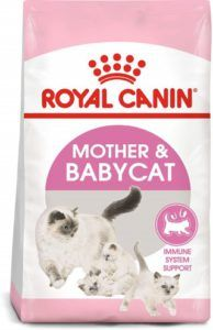 royal_canin_mother_and_babycat_immune_system_support_cat_food_for_outside_kittens_and_nursing_mamas